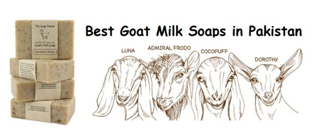Best Goat Milk Soaps in Pakistan