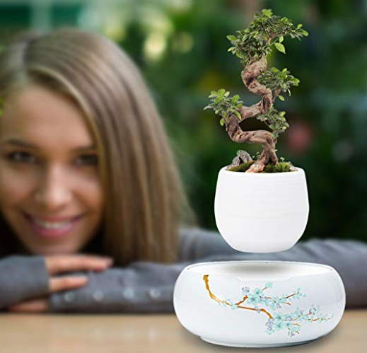 Active Gear Guy Levitating Plant Pot with Japanese Style Design for Flowers Or Bonsai