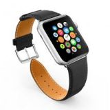 LoHi Apple Watch Ban…