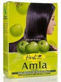 Hesh Amla Hair Powder 100g (Pack of 2)